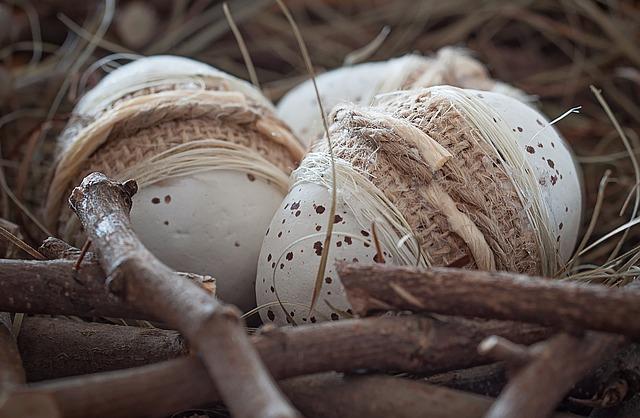 hnízdo.jpg